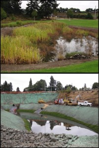 Costs for stormwater management facilities can differ dramatically depending on site conditions, the level of urbanization, and land value. Image courtesy of WSDOT