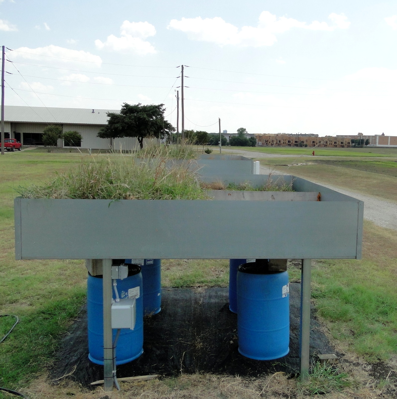 Texas A&M researchers are doing a side-by-side comparison of various green roof variables.