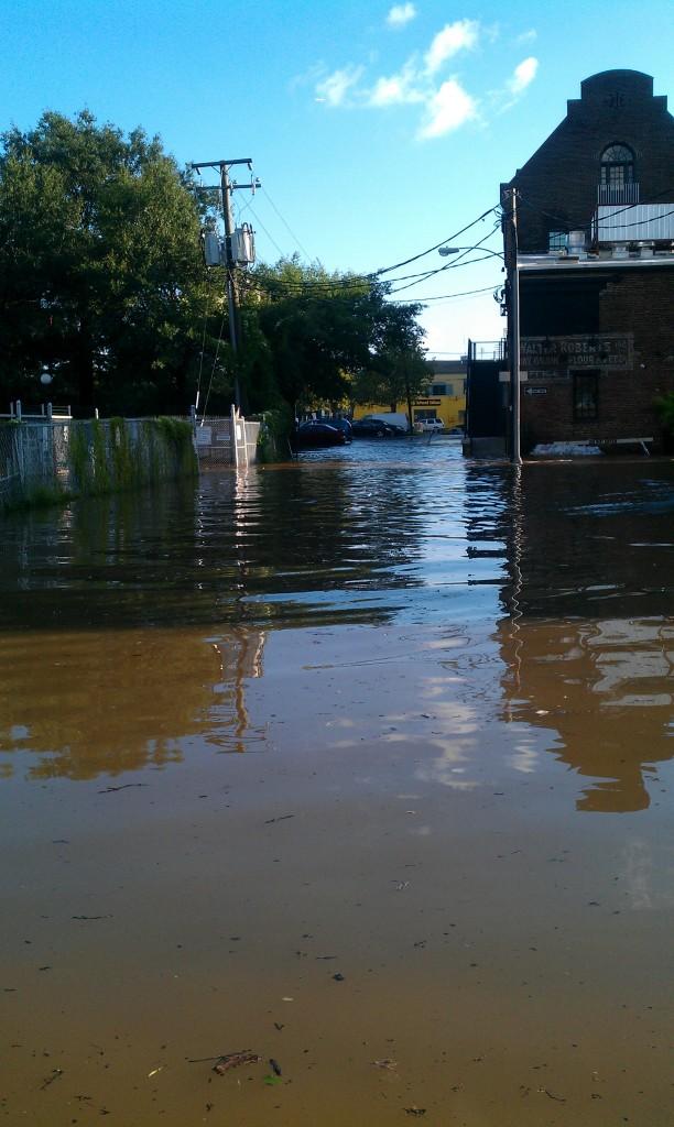 flooding in Alexandria