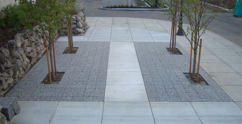 This example of pervious pavement surrounding several urban trees at an Amtrak station was provided by Xeripave Super Pervious Pavers.