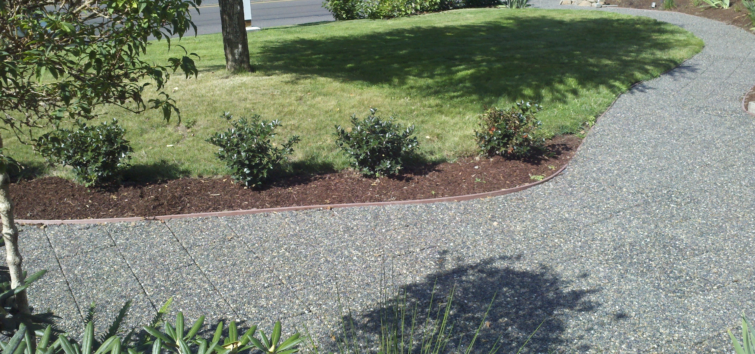 Are Pervious, Permeable, and Porous Pavers Really the Same?