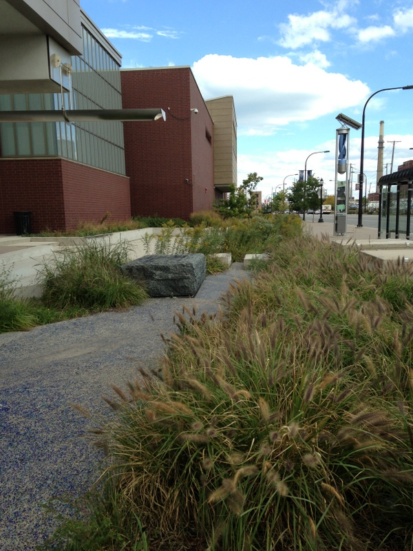 Runoff from the roof, street, and sidewalk drain into this water feature within the Cermak-Blue Island Sustainable Streetscape Project.