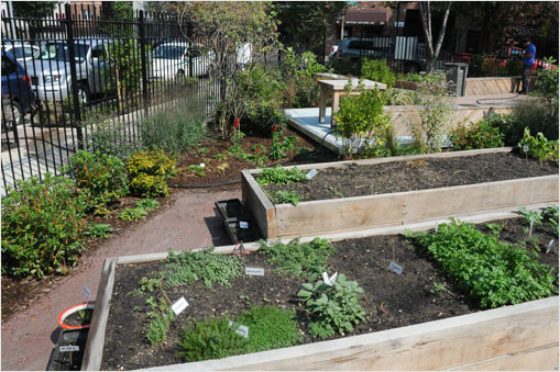 The Gil Hodges Community Garden Gowanus project was funded by the New York City Department of Environmental Protection's Green Infrastructure Grants.