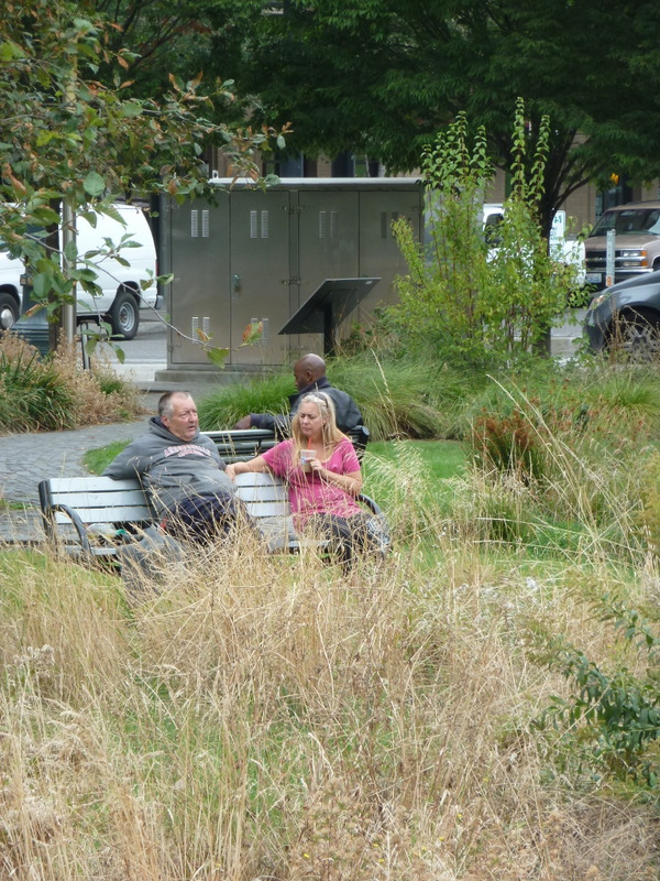 Stormwater holding parcels can be designed with multiple 'zones' of function and benefit. More naturalistic vegetation can be 'framed' by more refined and manicured spaces that invite people to enter and interact. Image credit: Kathleen Wolf