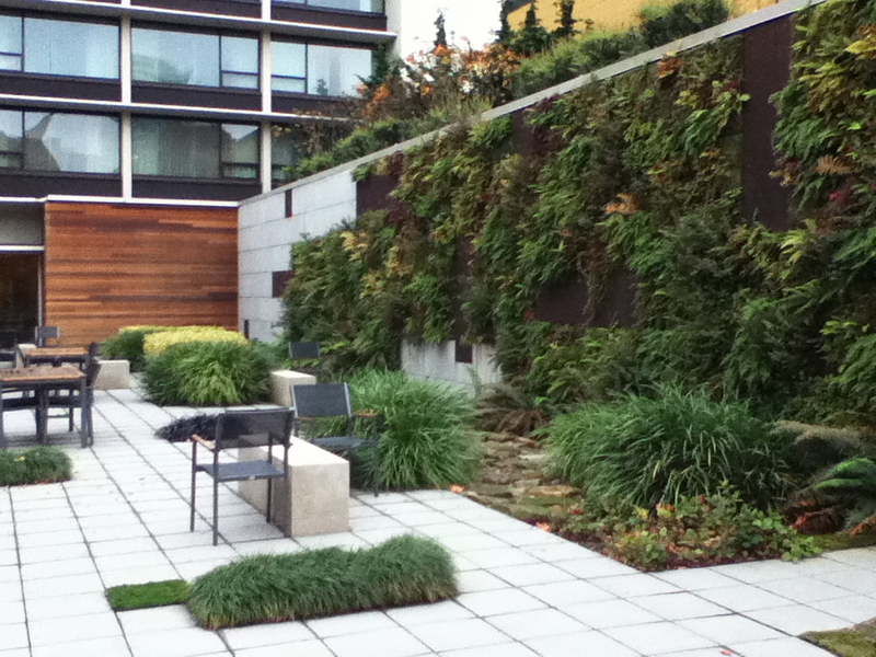 Both vertical and horizontal surfaces can be used for stormwater management and provide high quality spaces that people can enjoy. Image credit: Kathleen Wolf