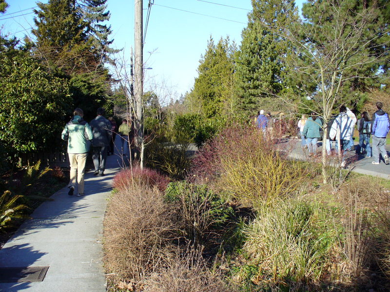 Roadside green infrastructure should include not only adequate sidewalk and lane provisions for bicycles and pedestrians, but also consider the quality of experience for those users. Image credit: Kathleen Wolf