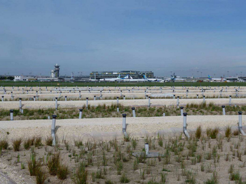 A new 6500 square meter marsh at Paris-Orly airport will supplement the airport's physical and chemical treatment system. Photo credit: Aéroports de Paris