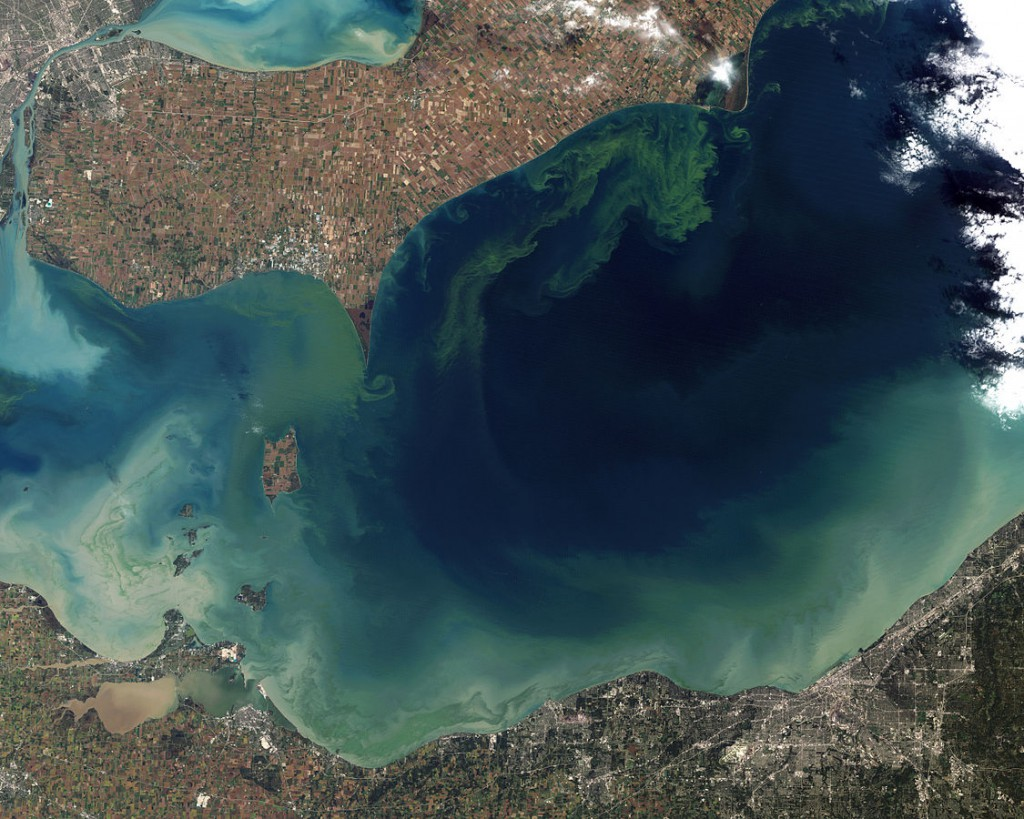 This image was taken in 2011 during one of Lake Erie's worst algae blooms in decades. Image credit: NASA Earth Observatory
