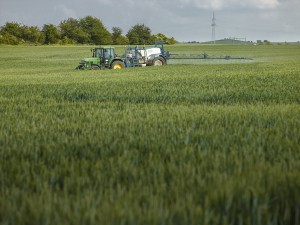 Agriculture is responsible for the major part of the input of chemicals into streams and rivers. Pesticides dominate the chemical burden of freshwater ecosystems. Photo: André Künzelmann, UFZ