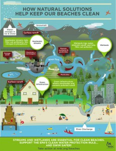 An infographic from NRDC on how natural solutions can help keep beaches clean.