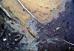 Bits of Styrofoam and other trash float in the Potomac River near a stormwater outfall after a large storm event.