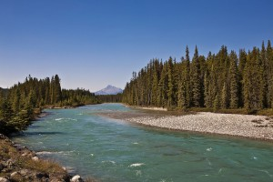 Healthy watersheds are a key component of Alberta's flood-resilient future. Photo credit: Alberta Government