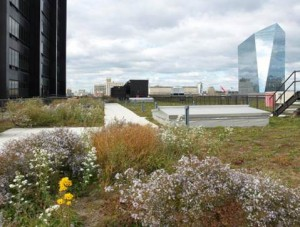 A green roof retrofit on the PECO Building in Philadelphia helps to fulfill the city's Green City, Clean Waters Initiative. Image by the Philadelphia Water Department