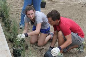 Volunteers begin installing native plants into the rain garden.
