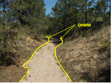 A natural drainage feature that accepts water from a roadside ditch. It has an Ordinary High Water Mark (OHWM) and is tributary to a water of the U.S. Image credit: Douglas County, Colorado