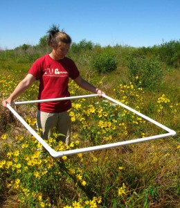 Environmental science student Anya Hopple collects wetlands data. Image credit: Indiana University