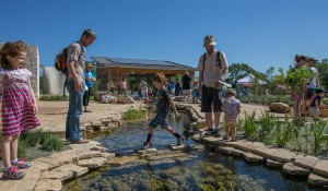 Luci and Ian Family Garden at the Lady Bird Johnson Wildflower Center in Austin, Texas. Image by Brian Birzer