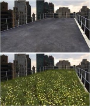 These are the images shown to study participants, one with a green flowering meadow on the city roof and the other of a stark concrete view. Image by University of Melbourne