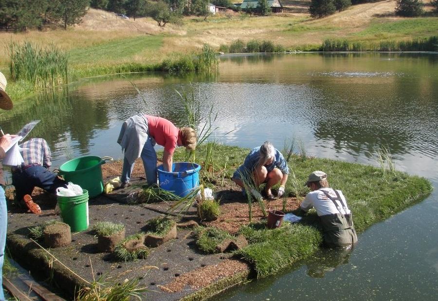 Idaho Groups Utilize  Monitor Floating Wetlands