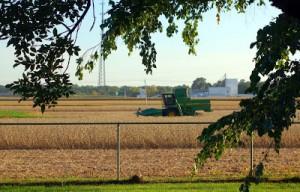 Photo_Illinois strategy to reduce nutrients