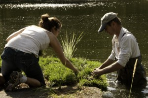 Volunteers plant a floating treatment wetland mat at Hayden Lake in Idaho. Image by Kootenai Environmental Alliance
