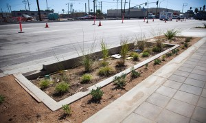 Anaheim Green Street Project bioswales with drought-tolerant landscaping. Image by Port of Long Beach