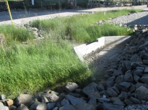 A bioswale with erosion- and trash-control best management practices at an orphan site. Image by Port of Long Beach