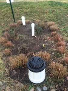 Bioretention following grass cutbacks. Image by DC Water