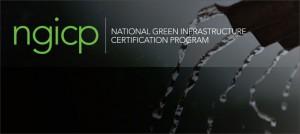 NGICP logo