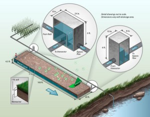 This schematic shows a typical denitrifying 'woodchip' bioreactor for treating nitrate in agricultural tile drainage. (Credit: Laura E. Christianson and Matthew Helmers/Iowa State Extension)