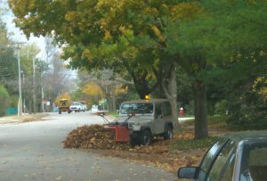 The timely removal of leaf litter can reduce harmful phosphorus concentrations in stormwater by more than 80% in Madison, Wisconsin. Autumn leaf litter contributes a significant amount of phosphorus to urban stormwater. A USGS-led study found that without removal, leaf litter, and other organic debris in the fall contributed 56% of the annual total phosphorus load in urban stormwater compared to only 16% when streets were cleared of leaves prior to a rain event. Photo Credit: Bill Selbig/USGS