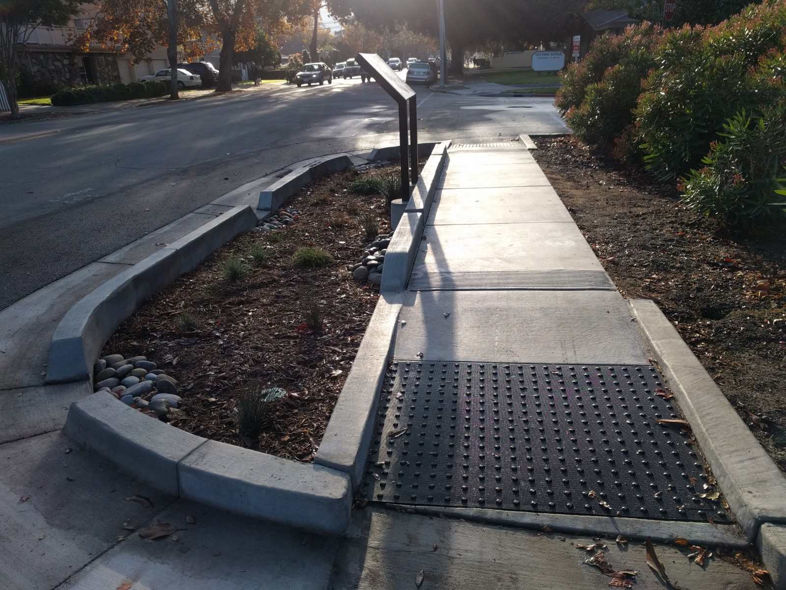 City of San Jose doubles down on stormwater control with 'green streets'
