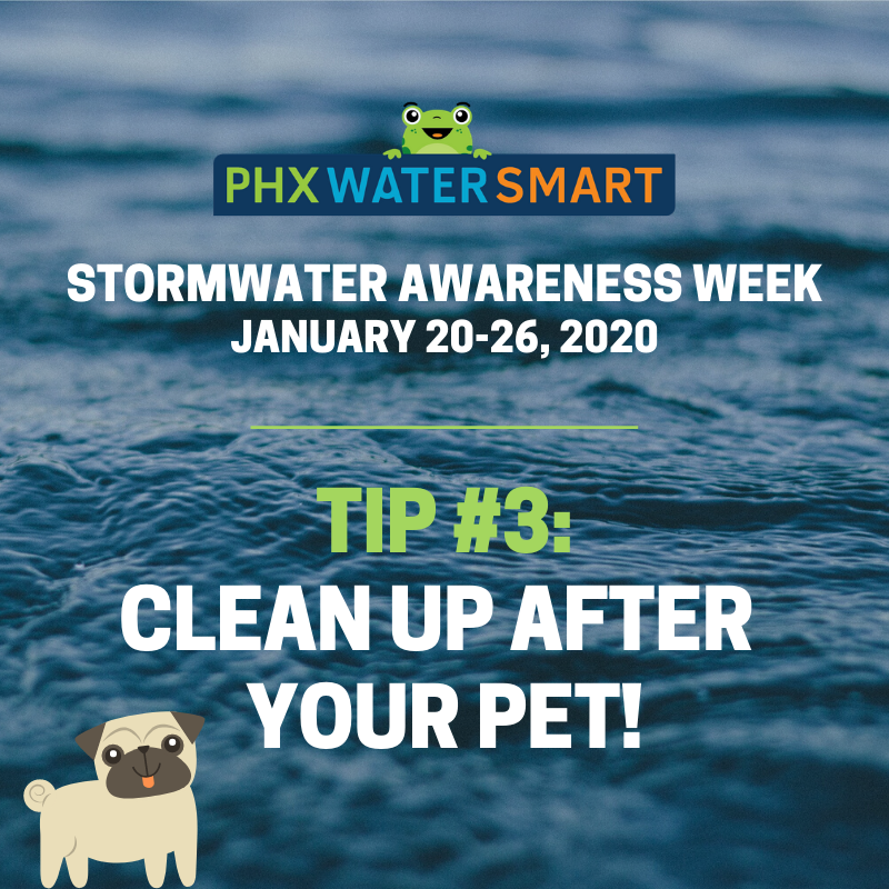 Phoenix, Ariz., Hosts Inaugural Stormwater Awareness Week