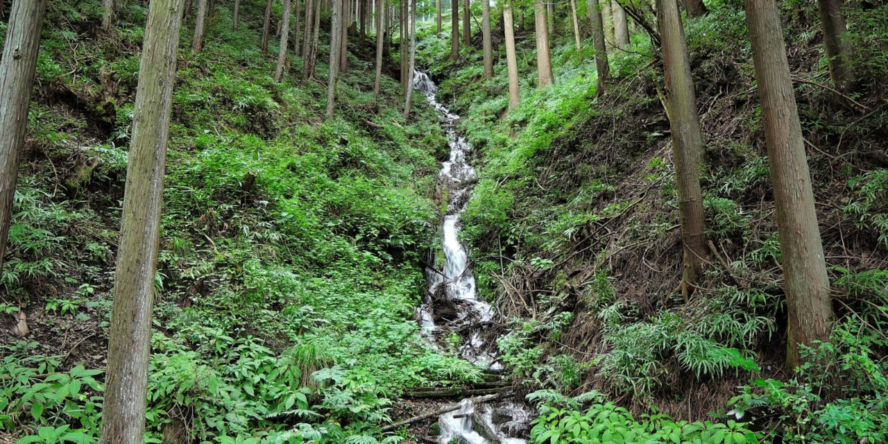 Increasing Dependence on Mountain Meltwater Could Threaten Lowland Agriculture