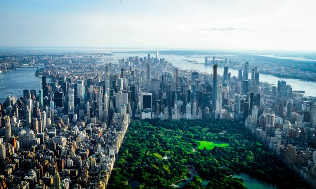 New Outreach Campaign Promotes Green Infrastructure in Public Parks