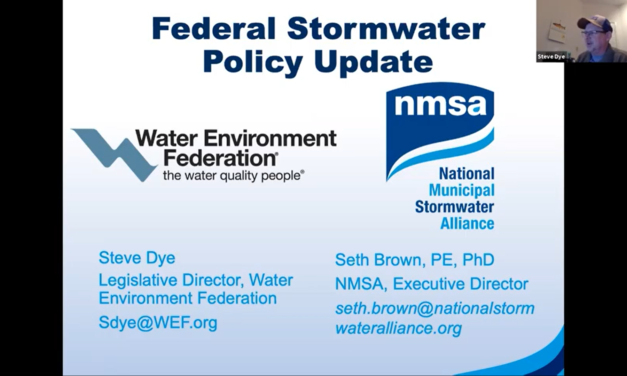 Experts Discuss State of the U.S. Stormwater Sector