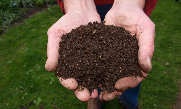 How Compost-Based BMPs Can Create More Resilient Watersheds